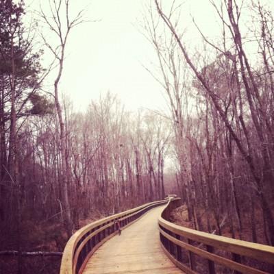 walnut creek bridge